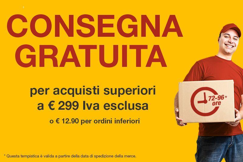 Consegna gratuita per ordine superiori a 300 €